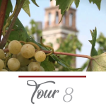 ST. CATHERINE IN MAZZORBO  AND VENISSA WINE TASTING